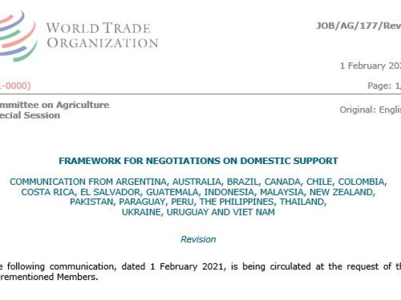 Framework for Negotiations on Domestic Support, Revision 1